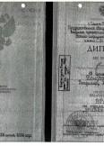 Бондаренко Владимир Анатольевич:фото сертификатов, диплома