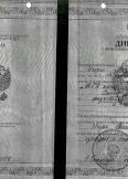 Панин Игорь Васильевич:фото сертификатов, диплома
