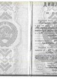Богачева Елена Николаевна:фото сертификатов, диплома