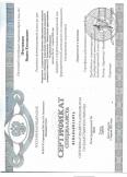 Пчелинцев Вадим Евгеньевич:фото сертификатов, диплома