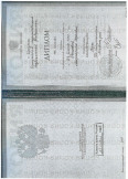 Россова Маргарита Юрьевна:фото сертификатов, диплома